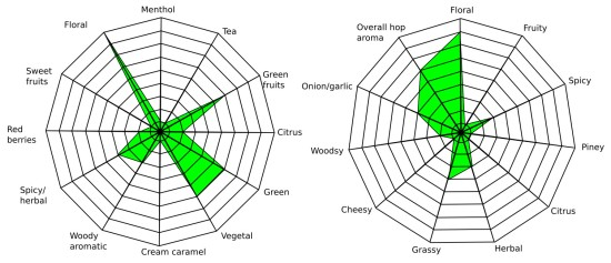 Wild Hop Spider Diagrams