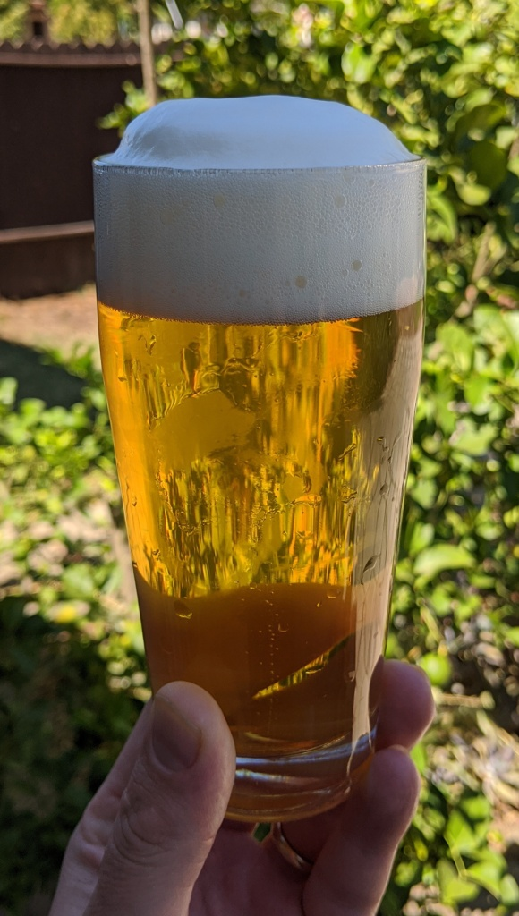 golden lager with frothy white head, held aloft in clear Willi Becher glass against green sunlit yard