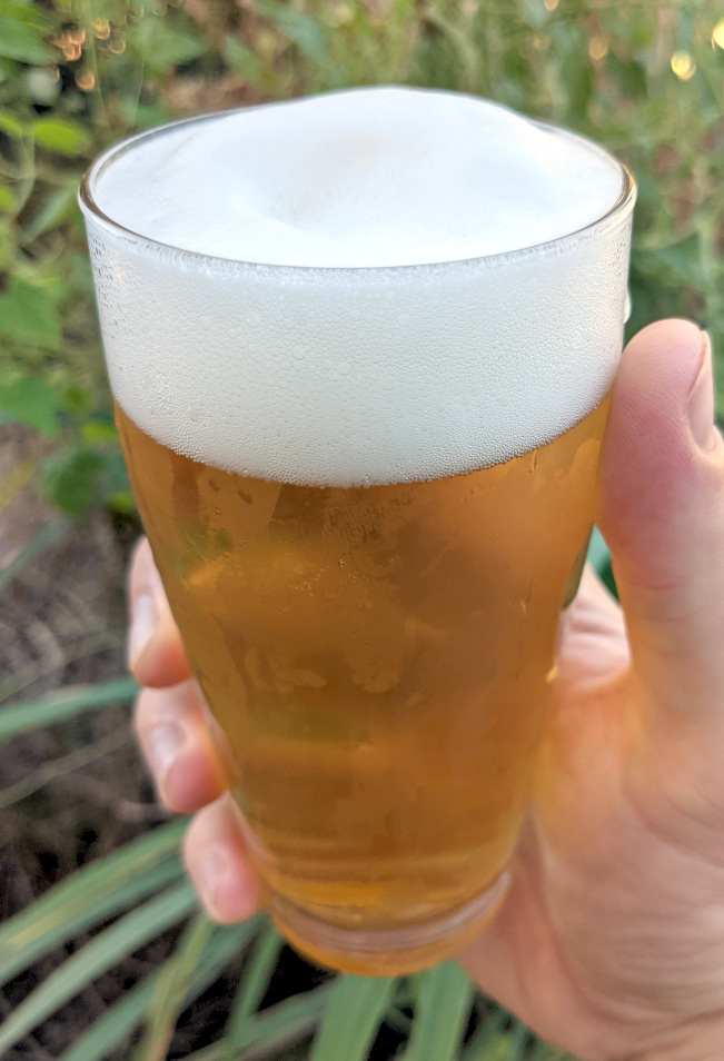 hand holding willi becher glass of yellow beer with white head